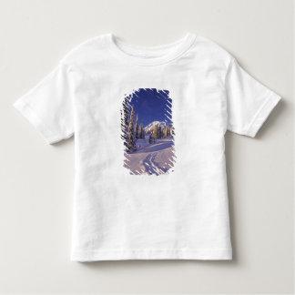 NA, USA, Washington, Mt. Rainier NP, Snowshoe Toddler T-shirt