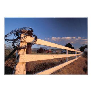 NA, USA, Washington, near Walla Walla, fence, Photographic Print
