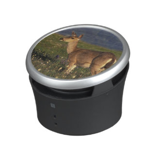 NA, USA, Washington, Olympic NP, Mule deer doe Bluetooth Speaker
