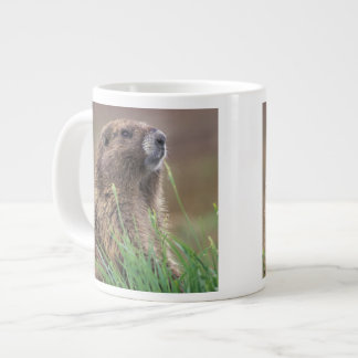 NA, USA, Washington, Olympic NP, Olympic 2 Large Coffee Mug