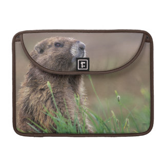 NA, USA, Washington, Olympic NP, Olympic 2 MacBook Pro Sleeve