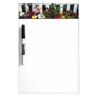 NA, USA, Washington, Sammamish, White picket Dry-Erase Board