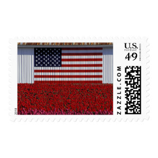 NA, USA, Washington, Skagit Valley, U.S. flag Postage Stamps