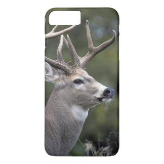 NA, USA, Washington State, White-tailed deer, iPhone 8 Plus/7 Plus Case