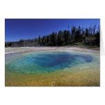 NA, USA, Wyoming, Yellowstone National Park. 2 Card