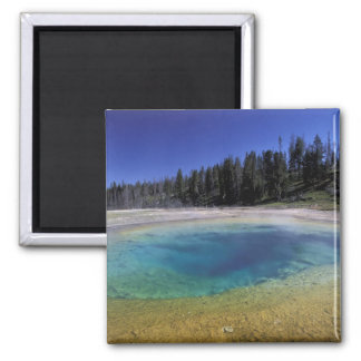 NA, USA, Wyoming, Yellowstone National Park. 2 Magnet