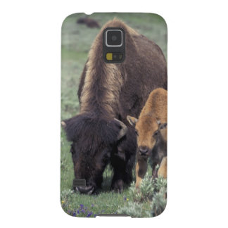 NA, USA, Wyoming, Yellowstone National Park. Case For Galaxy S5
