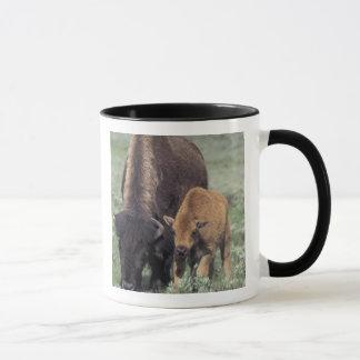 NA, USA, Wyoming, Yellowstone National Park. Mug