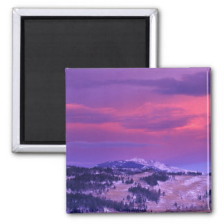 NA, USA, Wyoming, Yellowstone NP, Lamar Valley 2 Inch Square Magnet