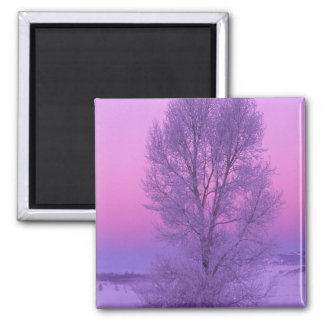 NA, USA, Wyoming, Yellowstone NP, Landscape 2 Inch Square Magnet