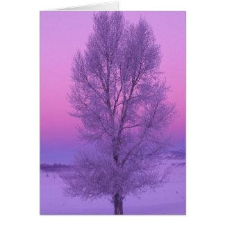 NA, USA, Wyoming, Yellowstone NP, Landscape Greeting Card