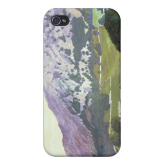 Nab Scar Case For iPhone 4
