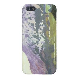 Nab Scar iPhone 5 Covers