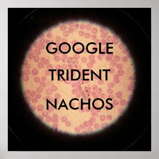 Nachos de Google Trident debajo de un microscopio Póster