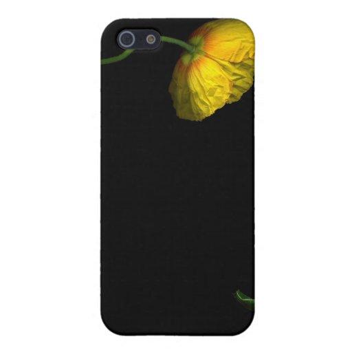 Nacimiento de la amapola iPhone 5 fundas