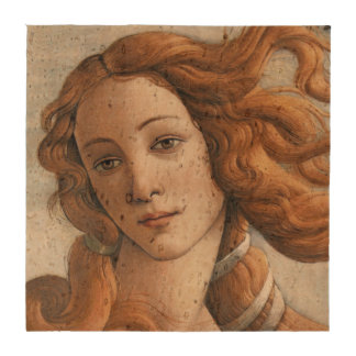Nacimiento del cierre de Venus para arriba por San Posavasos