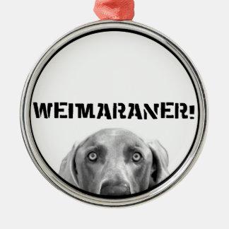 Nación de Weimaraner ¡Weimaraner en una caja Ornaments Para Arbol De Navidad