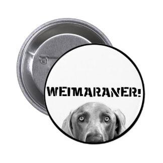 Nación de Weimaraner: ¡Weimaraner en una caja! Pin