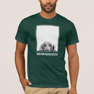 Nación de Weimaraner: ¡Weimaraner en una caja! Playera