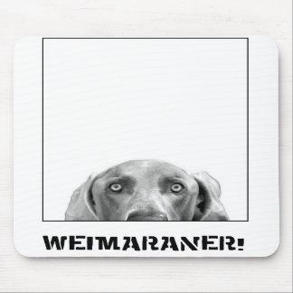 Nación de Weimaraner: ¡Weimaraner en una caja! Tapetes De Ratones