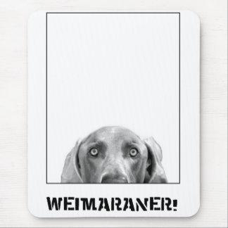 Nación de Weimaraner: ¡Weimaraner en una caja! Alfombrilla De Ratón