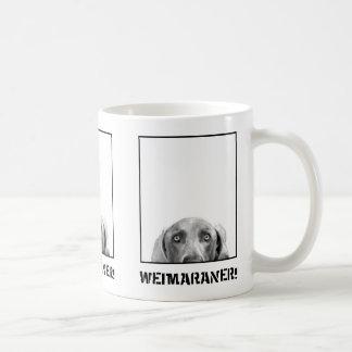 Nación de Weimaraner Weimaraner en una taza de la