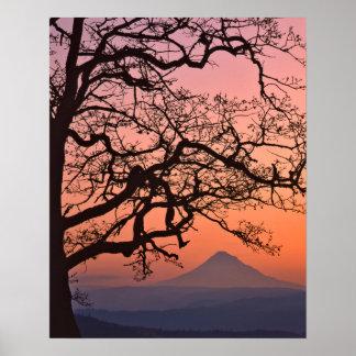 Nacional 2 de los E.E.U.U., Oregon, garganta del Póster
