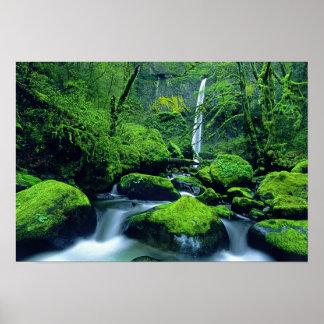 Nacional 2 de los E.E.U.U., Oregon, garganta del r Póster