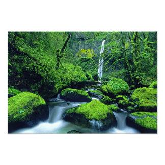 Nacional 3 de los E.E.U.U., Oregon, garganta del r Fotografias
