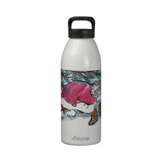 Nada considerar aquí dice el gatito en el gorra de botellas de agua reutilizables