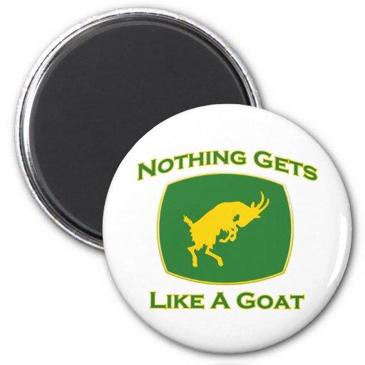 Nada consigue como una cabra imán