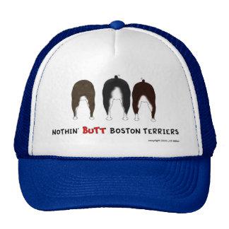 Nada empalma el gorra de los terrieres de Boston