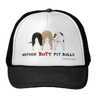 Nada empalma el gorra de Pitbulls