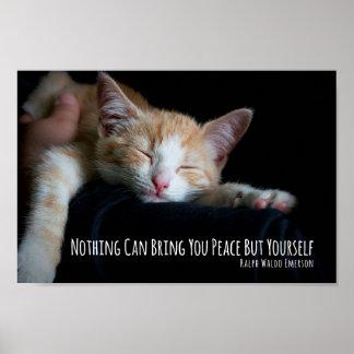Nada puede traerle el gato el dormir de la paz póster