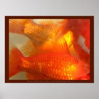 Nadada con el Fishies Posters