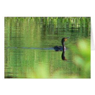 Nadada de domingo tarjeta de felicitación