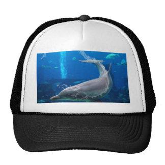 nadada del delfín de la Atlántida Gorros Bordados