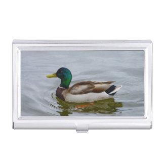 Nadada del pato silvestre de la nadada cajas de tarjetas de visita
