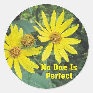 Nadie es pegatinas amarillos perfectos de los pegatina redonda