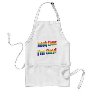 Nadie sabe que soy arco iris gay delantal