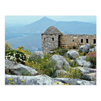 Nafplion Greece flowers Postcards