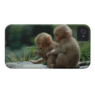Nagano Prefecture, Japan iPhone 4 Case-Mate Case