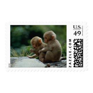 Nagano Prefecture, Japan Stamp