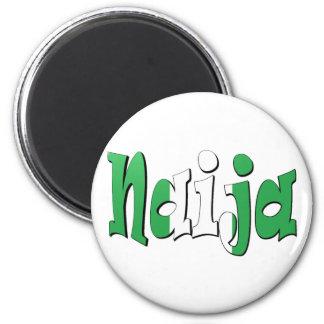 Naija (bandera nigeriana) iman de nevera