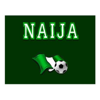Naija flag of Nigeria soccer stars gifts Postcard