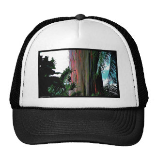 Naik Michel Photography Hawaii 008 Mesh Hats