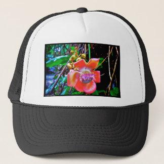 Naik Michel Photography Hawaii. Wallpapers images Trucker Hat