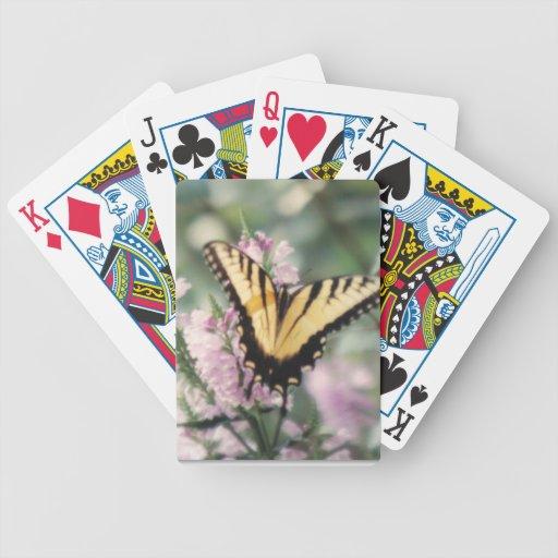 Naipes amarillos de la mariposa barajas de cartas