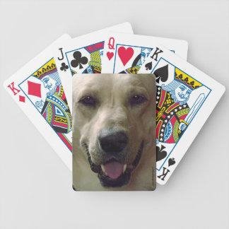 Naipes amarillos del laboratorio baraja de cartas