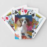 Naipes arrogantes del perro de perrito del perro d baraja cartas de poker